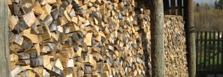 Качество дров разных пород деревьев